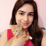Stockton Pet Sitter - Experience with Cats, Rabbits