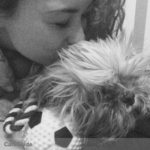 Pet Care Provider Kerenza V's Profile Picture
