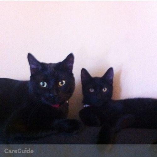 Pet Care Job Kirstie Scott's Profile Picture