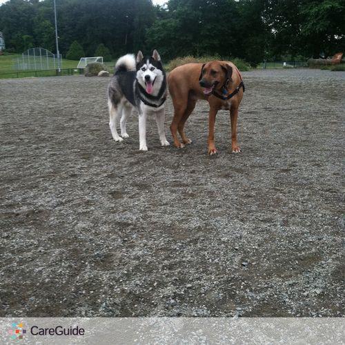 Pet Care Provider Amber Chiozza's Profile Picture