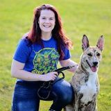 For Hire: Dedicated/Experienced Dog Lover in Bangor, Maine