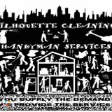 House Cleaning Company, House Sitter in Philadelphia