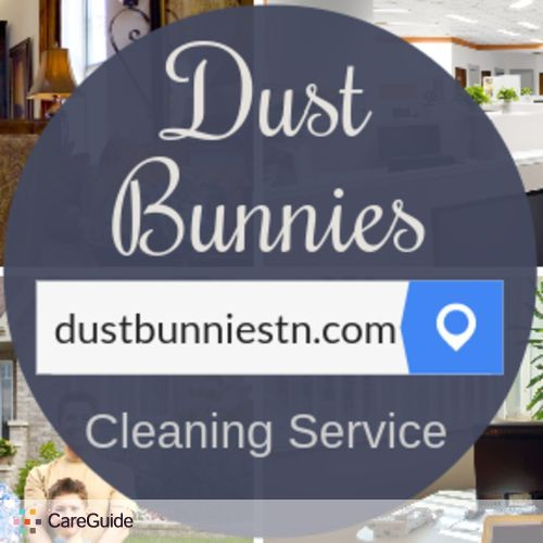 Housekeeper Provider Dust Bunnies of Middle Tennessee's Profile Picture
