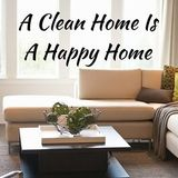 Available: Cleaning with your family & pets in mind. Waverly, Iowa
