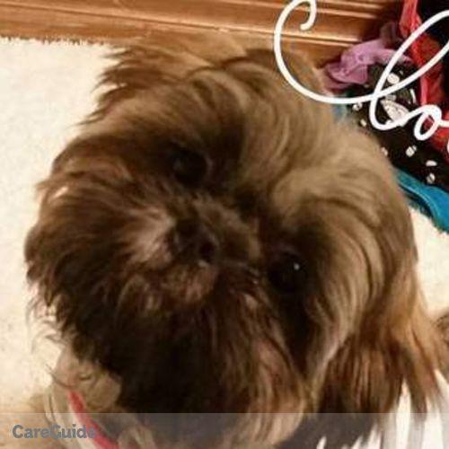 Pet Care Provider Jeanne B's Profile Picture