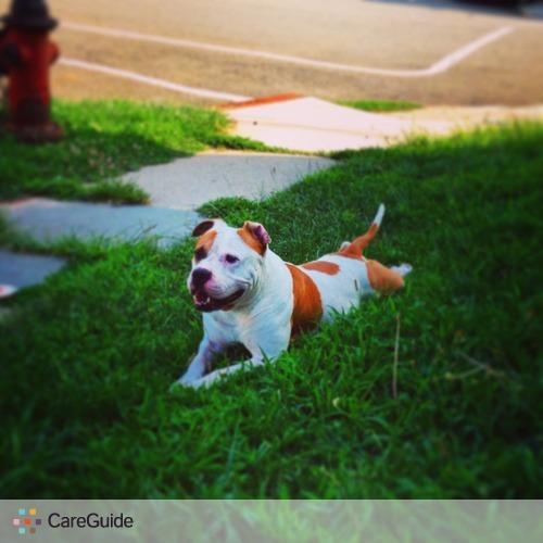 Pet Care Provider Duvan Felipe's Profile Picture