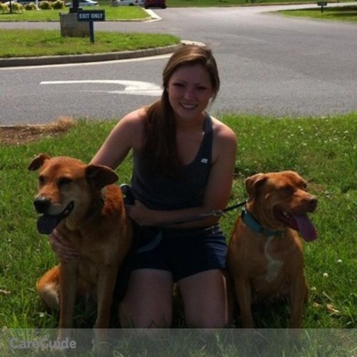 Pet Care Provider Caitlin Kelly's Profile Picture