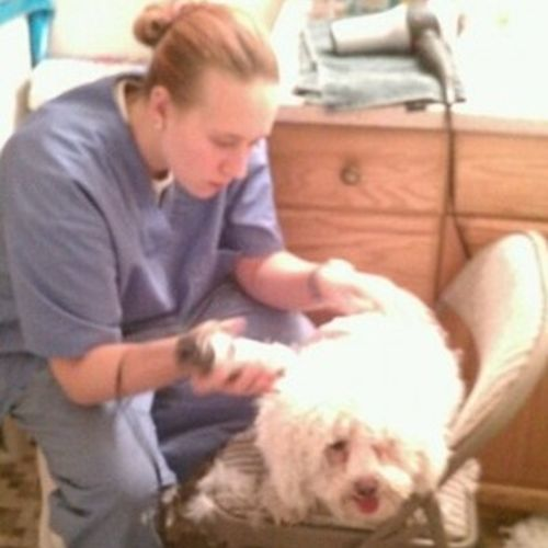 Pet Care Provider Kira Boyle Gallery Image 1