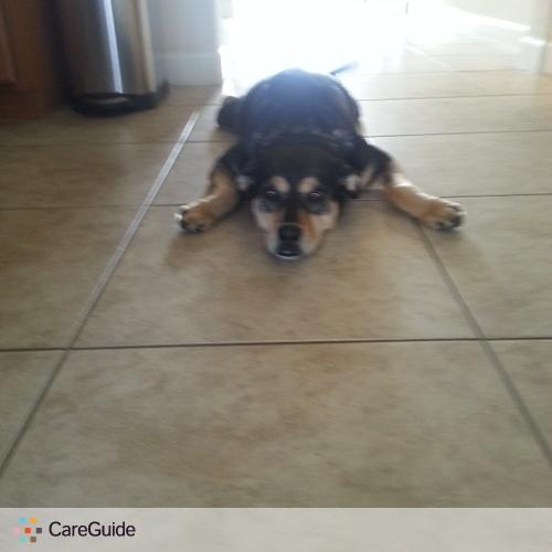Pet Care Provider Michele Dobbs's Profile Picture