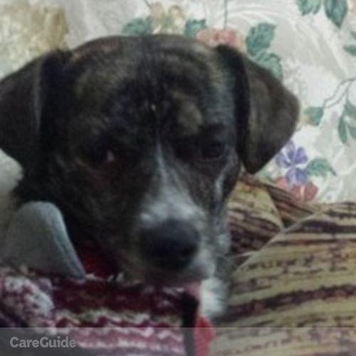 Pet Care Provider Annette Monroy's Profile Picture