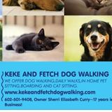 Pet Sitting,Boarding,Dog Walking,Cat Sitting,Cat Boarding Available Now!