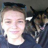 Pet Sitter with professional animal care experience