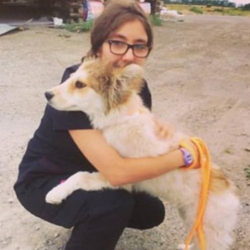 Pet Care Provider Ashely D's Profile Picture