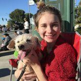Glendora Pet Care Provider Interested In Work in California