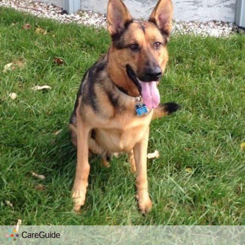 Pet Care Provider Michele D's Profile Picture