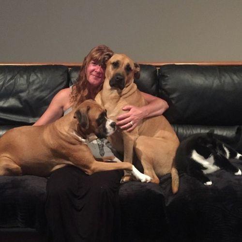 Pet Care Job Janine B Gallery Image 1