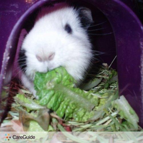 Pet Care Provider Maggie Mills's Profile Picture