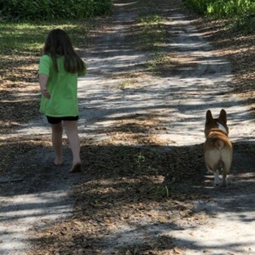 Pet Care Provider Susan O's Profile Picture