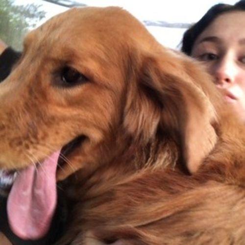 Pet Care Provider Jennifer M Gallery Image 1