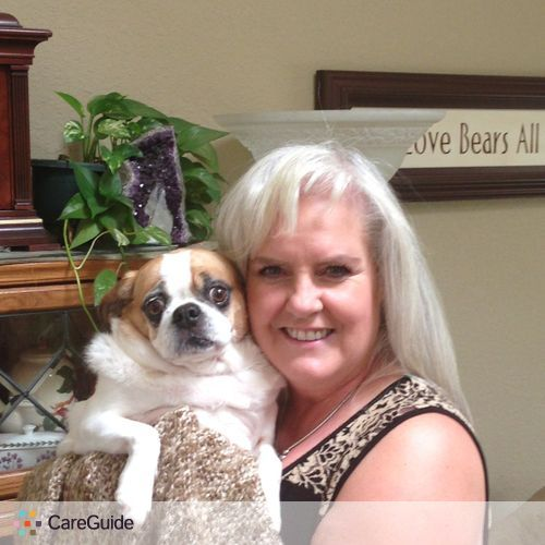 House Sitter Provider Bambi Wright's Profile Picture