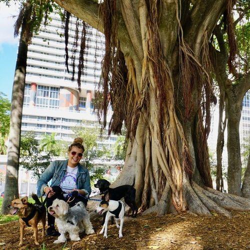 Pet Care Provider Cassie G's Profile Picture