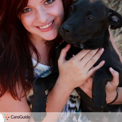 Pet Care Provider Taylor Harrison's Profile Picture