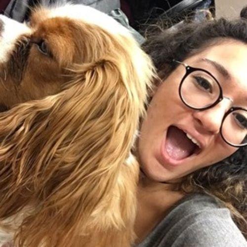 Pet Care Provider Ekin T's Profile Picture