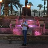 House Sitter in Palm Desert