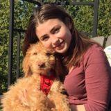 Dog walker/dog sitter
