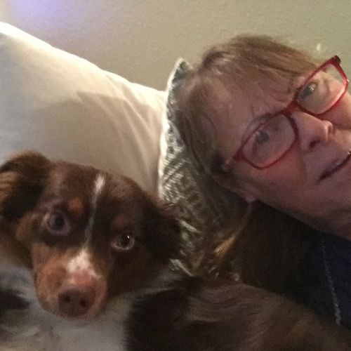 Pet Care Provider Marilyn Solari Rainbow Services Gallery Image 3