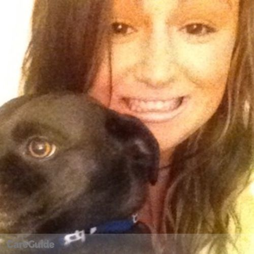 Pet Care Provider Amanda Miller's Profile Picture