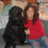 Pet sitter, I have been doing this for 14 years Live in pet sitter all pets, I live in E. Hampton CT, CG 50-60 a night