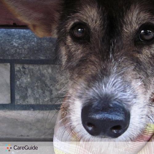 Pet Care Provider Peej Kim's Profile Picture