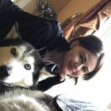 Need Petsitter for Dogs, Cats, Guinea Pigs, Hamsters, & Rabbits!