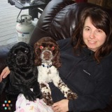 Dog Walker, Pet Sitter in Medina