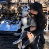 Knowledgeable Dog Trainer in Tarzana, California