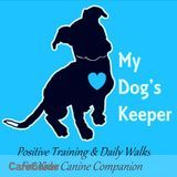 Dog Walker, Pet Sitter, Kennel in Charlotte