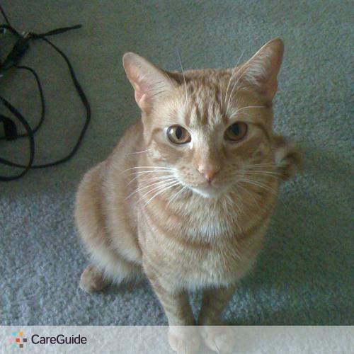 Pet Care Job Erin Clift's Profile Picture