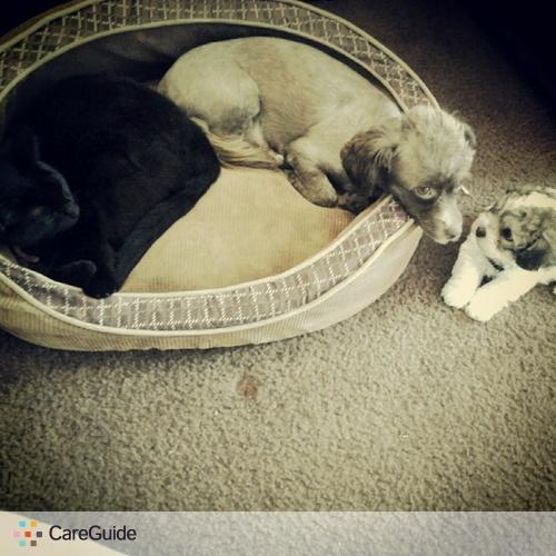 Pet Care Provider Mari E's Profile Picture