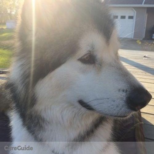 Pet Care Provider Natalie S's Profile Picture