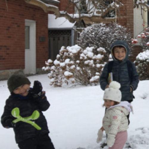 Career parents seek trustworthy after school caregiver for 3 kids