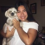 Available: Well Trained Pet Groomer in Cathedral City, California