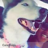 Dog Walker, Pet Sitter in Oxnard