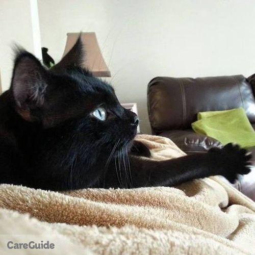 Pet Care Job Rachel Weaver's Profile Picture