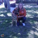 Dog Walker in Anaheim