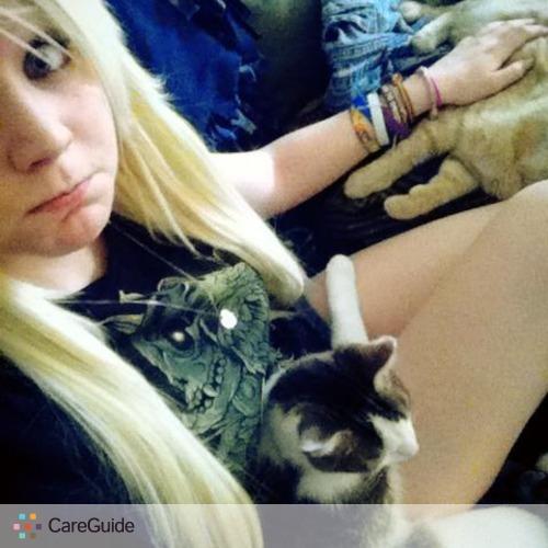 Pet Care Provider Katiee Stull's Profile Picture