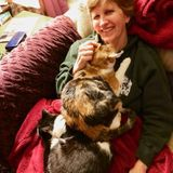 Hiring a Passionate House and Pet Sitter