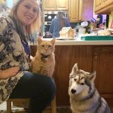 Available For Hoschton Pet Care Provider Opportunity