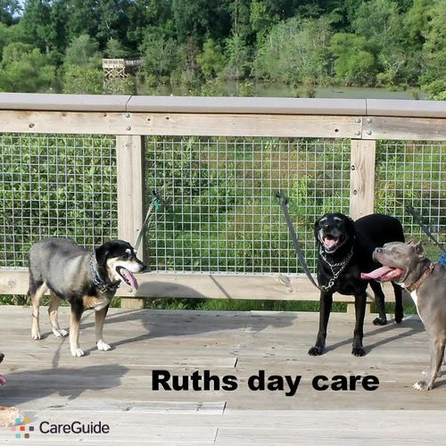 Pet Care Provider Ruth Hannah's Profile Picture