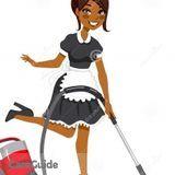 Housekeeper, House Sitter in Arlington